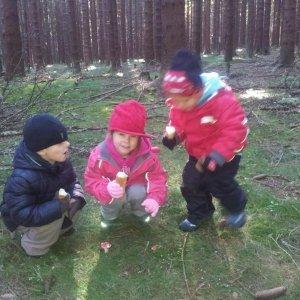 Školka v přírodě 2011 (9)