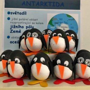 tučňáci k učení se o Antarktidě